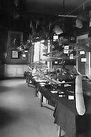 expo 1950